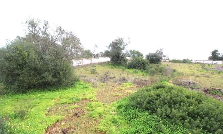 Land - Vale de Éguas